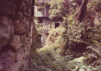1982: Überwuchertes, verlassens Dorf