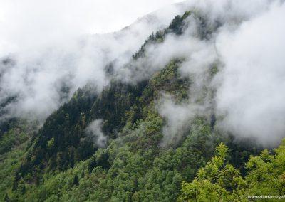 Aufsteigender-Nebel